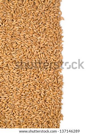dinkel cereals on a white background with clipping path