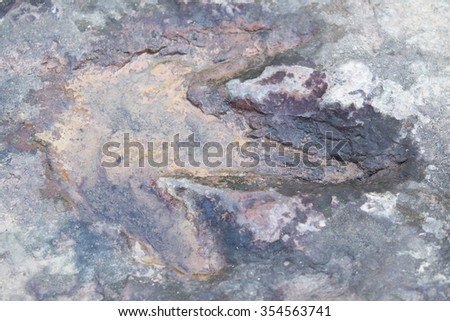 Dinosaur footprint in stone, nature and extinct animals, thailand - stock photo