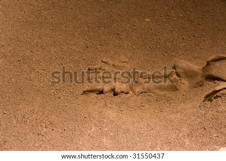 Dinosaur Fossil in rock and sand,yunnan - stock photo