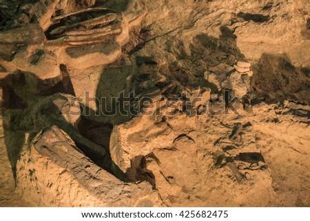 Dinosaur fossil,Skeleton of  dinosaur fossil,Old dinosaur fossil,Dinosaur Fossil in rock and sand - stock photo