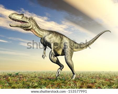 Dinosaur Megalosaurus Computer generated 3D illustration - stock photo