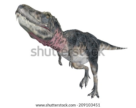 Dinosaur Tarbosaurus isolated on white background Computer generated 3D illustration - stock photo