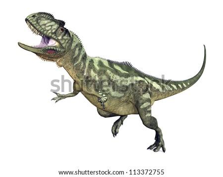 Dinosaur Yangchuanosaurus Computer generated 3D illustration - stock photo