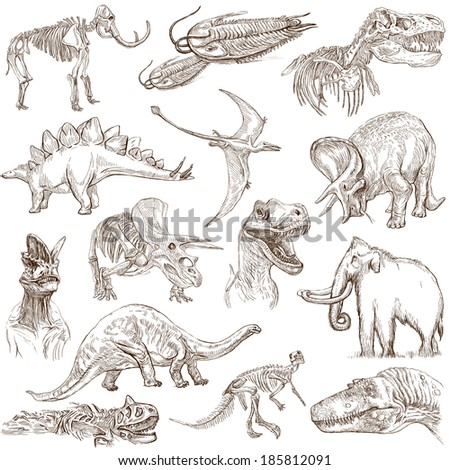 DINOSAURS (set no. 3) - Collection of an hand drawn illustrations. Description: Full sized hand drawn illustrations drawing on white background. - stock photo