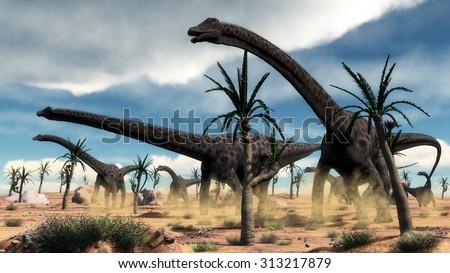 Diplodocus dinosaurs herd walking among rocks and williamsonia trees in the desert - 3D render - stock photo