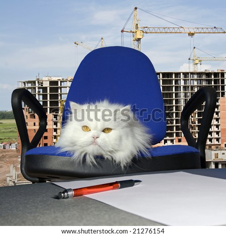 Director of building area . Industrial construction - stock photo