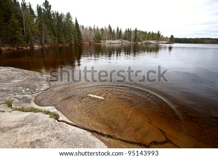 Diriftwood on Northern Manitoba lake - stock photo