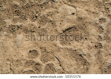 Dirt - stock photo