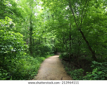 Dirt Path curves into the distance in Forest in Rock Creek Park, Washington DC. - stock photo