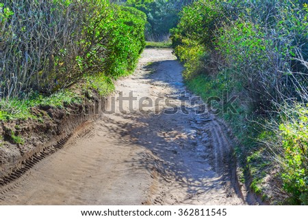 dirt path in the countryside in Sardinia