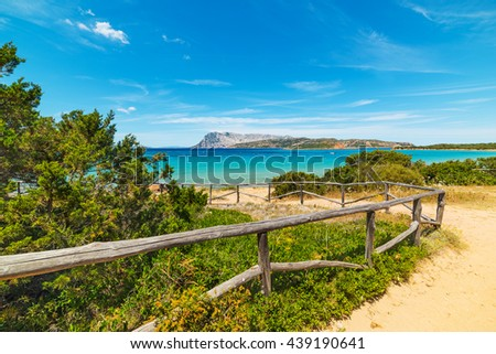 dirt path to the beach in Costa Smeralda, Sardinia - stock photo