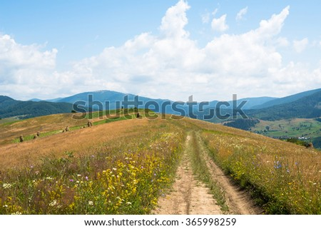 Dirt road against the summer landscape in the Ukrainian Carpathian Mountains. - stock photo
