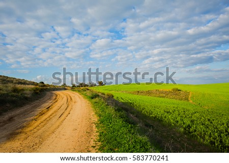 Dirt road at grass field background.