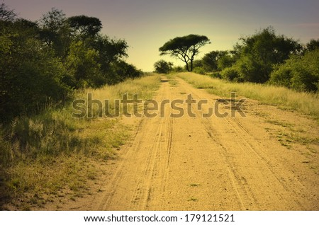 Dirt road in african savannah at dusk and thorn tree in the distance - stock photo