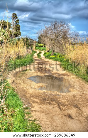 dirt road in hdr tone mapping effect - stock photo