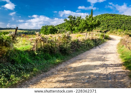 Dirt road in the countryside, Tuscany - stock photo