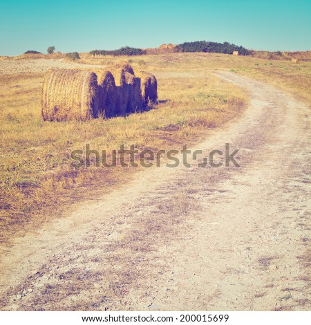Dirt Road Leading to the Farmhouse in Tuscany, Instagram Effect - stock photo