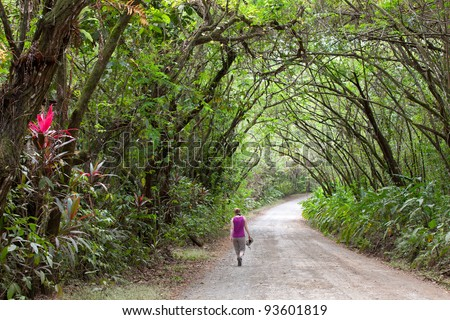 Dirt Road - Osa Peninsula, Costa Rica - stock photo