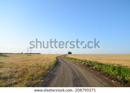 Dirt road through a wheat field, blue sky  - stock photo