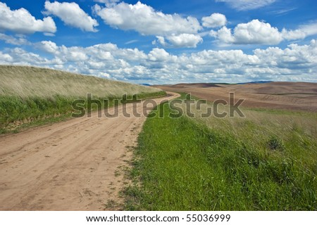 Dirt road winding through rolling hills in the Palouse region of Washington state in spring