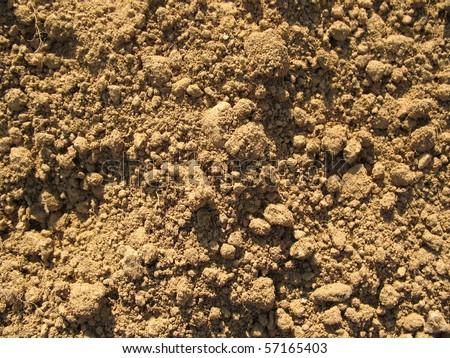 Dirt Soil - stock photo