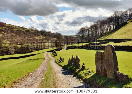 Dirt track through lush farmland in Longsleddale, English Lake District leading to hills covered in bare deciduous trees - stock photo