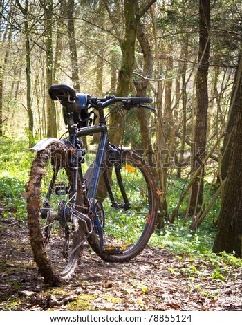 Dirty mountain bike in the forest - stock photo