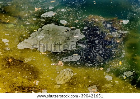 Dirty oil stains on the surface of the lake water polluted as a result of run-off of waste industrial water. Spot oil after washing the car near the lake. Ecological problem. - stock photo
