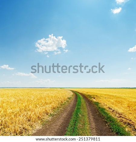 dirty road in yellow field under blue light sky - stock photo