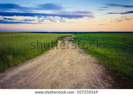 Dirty rural road in countryside / Dusty road