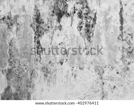 Dirty white wall with mold - stock photo