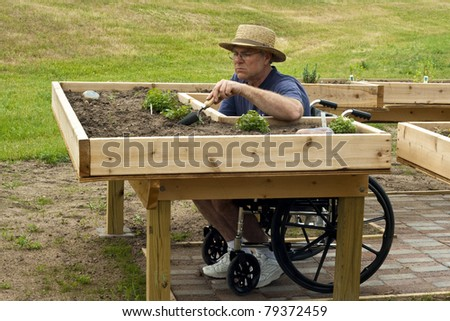 disabled man in a wheelchair working at an enabling garden table - stock photo
