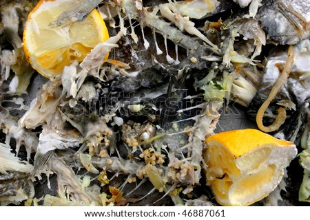 Discarded fish bones and peelings for food hygiene and health and safety use - stock photo