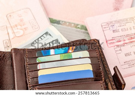 Disclosed passport with visa