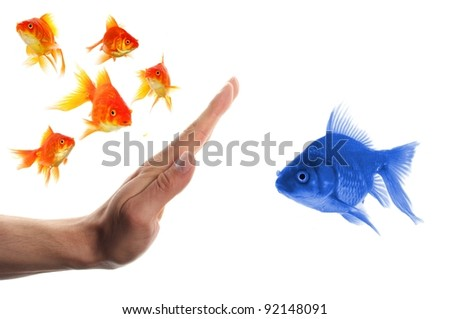 discriminating outsider racism or intolerance concept with goldfish and hand - stock photo