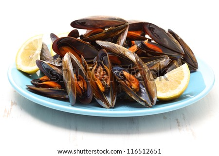 dish of boiled mussels isolated on white - stock photo