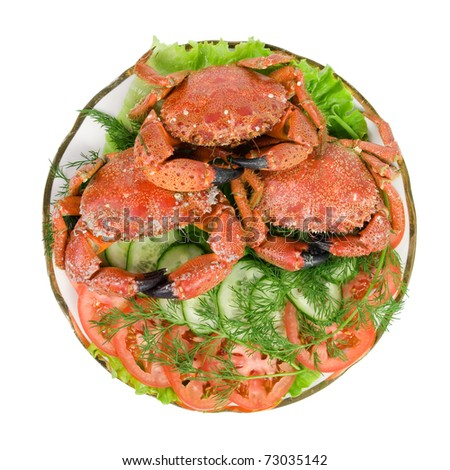 Dish with seafood. Crab and sliced ??cucumbers and tomatoes. Isolated on white background. - stock photo