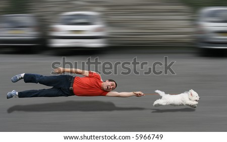 Disobedient dog running and dragging a man by the leash - stock photo