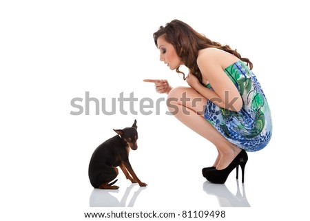 disobedient little dog with lady dog, isolated on white background - stock photo