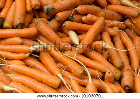 Display of fresh carrots at the farmers market - stock photo