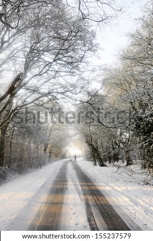 Distant dog walker crosses snow covered country lane  - stock photo