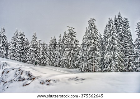 Distant Hiker on Snowshoes Stops to take in Winter Alpine Scene - stock photo