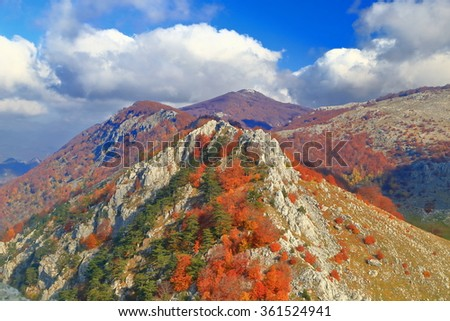 Distant mountains covered with vivid vegetation in sunny day of autumn - stock photo