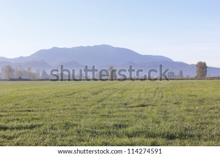 Distant mountains overlook Fraser Valley farm land in British Columbia's southwest/Southwest British Columbia/Distant mountains overlook Fraser Valley farm land in British Columbia's southwest - stock photo