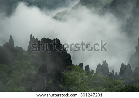 Distant trees surrounded by thin fog on the limestone ridge, Laos - stock photo