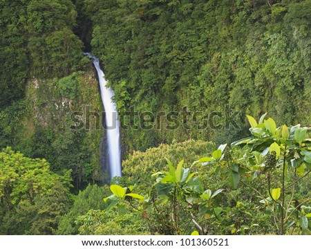 Distant view of La Fortuna Waterfall amongst the rainforest near Arenal Volcano in Costa Rica