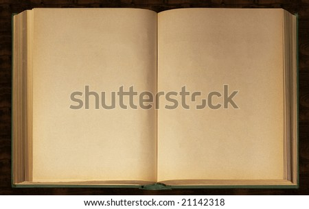 Distressed Vintage Stained Old Book Open - stock photo