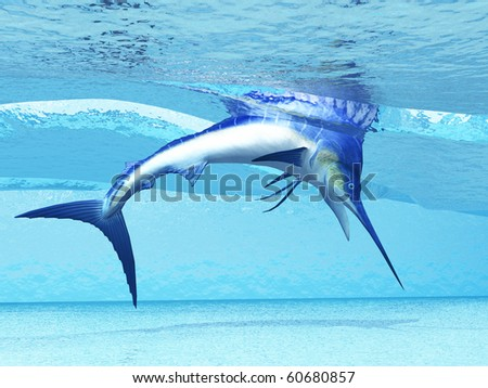 DIVE - A Marlin dives in shallow waves looking for fish to eat. - stock photo