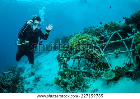 Diver and biorocks of coral reefs in Gili, Lombok, Nusa Tenggara Barat, Indonesia underwater photo. Various coral reefs, acropora, feather stars. the substrate are sand.