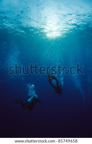 Diver at underwater surface - stock photo